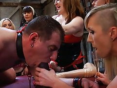 FEMDOM GANG BANG: Dicklet whore man pussy destruction